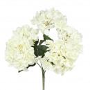 Hortensia, 5 capitules, L45cm, blanc